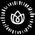 logo-iris2